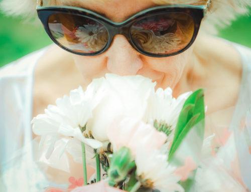 Quand les fleurs se racontent… à Grasse