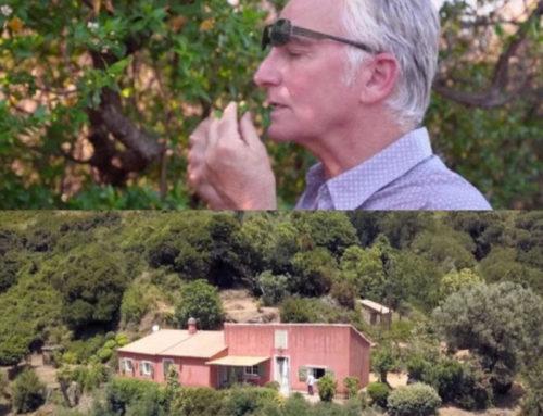 Un Nez aux source du Maquis Corse